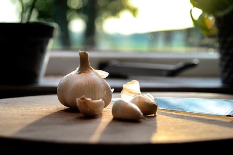 Garlic on a table